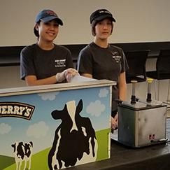 Office/Corporate Ice Cream Catering
