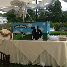 Ice Cream Wedding Catering